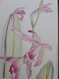 Original Watercolor with coloured mount   by RichardHarveyAllsop, $97.64