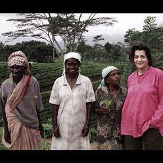 Photo from the Instacanvas gallery for ilaria_agostini. In Sri Lanka, 4 smiling women i the ceylon tea plantations