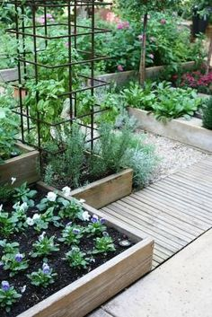 An edible kitchen garden with clever tiered vertical beds, make great use of a narrow space that was formerly a dog enclosure.