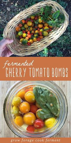 Fermented cherry tomato bombs are an excellent way to preserve an abundance of cherry tomatoes The finished fermented tomatoes have a slight effervescence and amazing fla. Fruits And Veggies, Vegetables, Fermentation Recipes, Fermented Foods, Vegetable Recipes, Real Food Recipes, 6 Months, Abundance, Cooking
