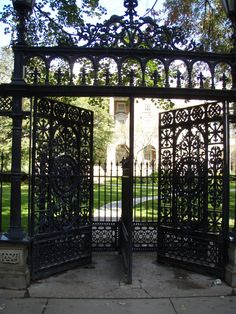 'Cow catcher gates' at Osgoode Hall (Queen Street West and University Avenue) Beautiful iron gate work