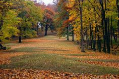 IOWA - Effigy Mounds National Monument, Marquette, Iowa
