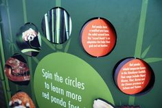 Red Panda exhibit signage at the Houston Zoo. Designed/collaboration by Nicte Creative Design. Interactive Exhibition, Interactive Walls, Exhibition Display, Museum Exhibition, Children's Museum, Zoo Signage, Signage Design, Houston Zoo, Design Museum