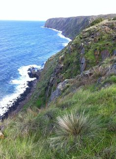 Cliffs on the Victor Harbor to Waitpinga section. https://www.facebook.com/cmeijborg