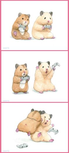 Cute Little Animals, Cute Funny Animals, Cute Cats, Baby Animals Pictures, Cute Animal Pictures, Cute Animal Drawings, Cute Drawings, Japanese Hamster, Funny Hamsters