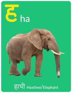 Hindi Alphabet eBook for Kids - Letter ह - Ira Parenting Alphabet Writing Worksheets, Hindi Worksheets, 1st Grade Worksheets, Preschool Worksheets, Free Preschool, Children Book Quotes, Hindi Language Learning, Hindi Alphabet, Hindi Books