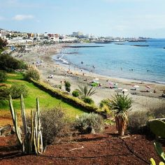 #Playa Fañabe // Fañabe #beach  #tenerife