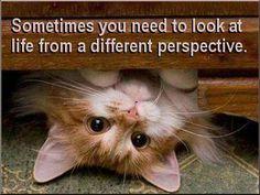 時には違った角度から見てみることも大切です