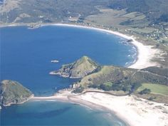 5 Things You Must Do When Visiting Great Barrier Island