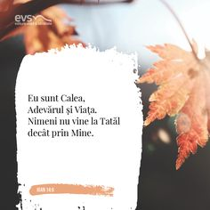 Bible Quotes, Bible Verses, Spiritual Quotes, Spirituality, Cards Against Humanity, Beautiful, Bible, Spirit Quotes, Spirituality Quotes