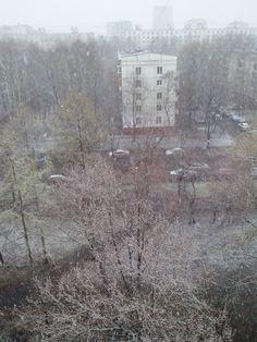 Снег 20 апреля 2015, из моего окна