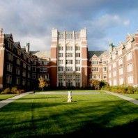 essays on universities