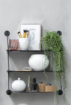 Shelf stying with our deluxe faux string of pearls plant in pot. Also known as the Senecio trailing plant, perfect for a shelf or can be used as a hanging pot for a bohemian look. Artificial Hanging Baskets, Hanging Pots, Hanging Shelves, Fake Plants Decor, Faux Plants, Plant Decor, Plants Indoor, Potted Plants, Living Room Plants