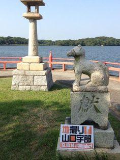 Twitter / MFujikasa: 常盤神社の裏の狛犬。狐みたいで、お稲荷さんかも。 13.10 ...