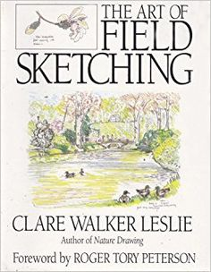 Amazon.com: The Art of Field Sketching (9780787205799): LESLIE  CLARE WALKER: Books