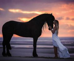 so me if i had a horse!!