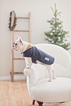 Sully Pin Check Wool Jacket