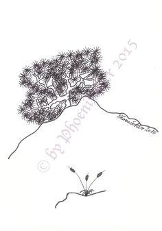 Foto Dandelion, Diagram, Map, Signs, Flowers, Plants, Photos, Dandelions, Location Map