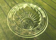I messaggi dei cerchi nel grano