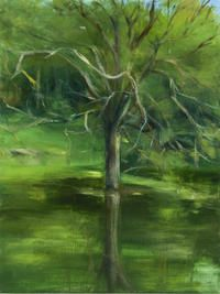 Green Tree in the Water by Karen Marston @Artsicle http://www.artsicle.com/artists/Karen-Marston/artworks/green-tree-in-the-water#main