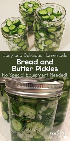 Easy and Delicious Homemade Bread and Butter Pickles Recipe (no special equipment needed!) | Real Life at Home
