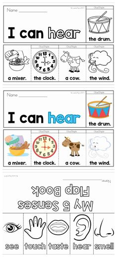 5 Senses Flip Books (color and black & white) & Flap Book for sorting pictures to the matching sense