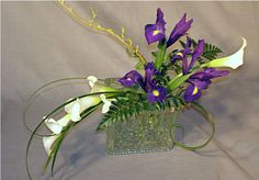iris and callas