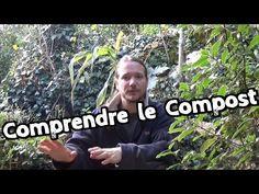 Quelques explications sur la pollinisation et l'hybridation des courges, courgettes, melons, pastèques, concombre etc ... Permaculture Agroécologie etc ... T...