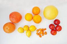 different type of citrus exotic fruits kumquat with orangelemon blood