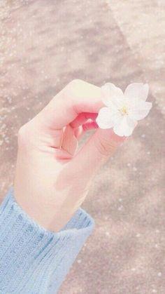 Flowers Aesthetic Pastel Background 67 New Ideas Flower Aesthetic, Aesthetic Photo, Pink Aesthetic, Aesthetic Pictures, Beautiful Hands, Beautiful Flowers, Beautiful Pictures, Hand Photography, Vintage Photography