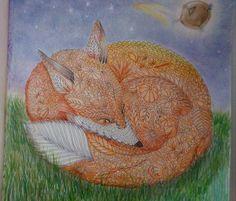 Reino Animal - a raposa Animal Kingdom - the fox @milliemarotta #livrodecolorir