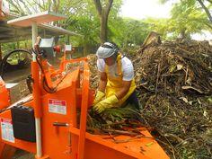 La Universidad Icesi implementa proyecto para beneficiar el medio ambiente