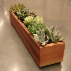 Long Window Box Succulent Planter in Reclaimed by andrewsreclaimed, $75.00  Instructions:  First, please follow the instructions that come with your succulents, as methods can vary some from variety to variety.  1. Fill the planter with about a one inch layer of gravel.  2. Place your small succulents in the planter.   3. Add a peat-based potting soil or peat/compost blend on top the gravel, around the succulents, filling the planter almost to the top.   4. Water the soil layer slowly until…
