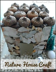 Nature house craft. Perfect for small worlds and pretend play. My Nearest and Dearest blog. Make a mini house using a milk container cut in half to make two houses, paint the surface then collage with natural items. What a great way to make a house for a mini-garden!