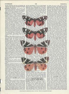 Cute Butterflies on Upcycle Book Print Art Print
