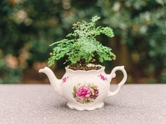 """Plant a """"lacy"""" plant in a pretty teapot.  Be sure to put rocks or something similar in the bottom to help with drainage.  Or you can carefully drill a drainage hole in the teapot bottom with the proper kind of drill bit."""