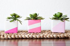Oh the cuteness...DIY Planters   Darby Smart   Decor