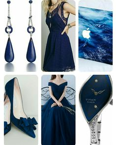 Royal Blue 👑