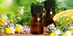 Guide des huiles essentielles contre les troubles circulatoires