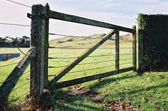 Gate at Maraekakaho, 2004 - taken by me with no fussy filters or special tricks