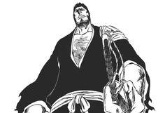 Isshin Bleach Anime/Manga