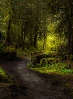 Chronicles of a Love Affair with Nature Somewhere only we know… by Kristina Wilson