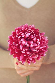 Pink flower, via Flickr.