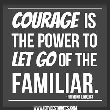 Courage Quotes Prepossessing Image Result For Quotes About Courage  Let Me C  Human Spring .