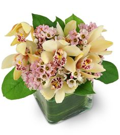Indulge the senses in an arrangement that's equal parts exotic and  enchanting! Exquisite mini cymbidium orchids are delicately accented  with pretty pink waxflowers and come neatly nestled in a leaf lined  glass cube vase. This lovely