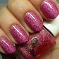 July LE 2015 swatched by @thepolishedhippy