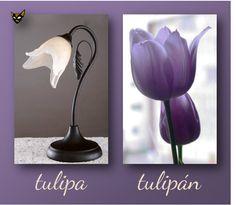 Zarampagalegando: Parellas imposibles. Tulipa/Tulipán
