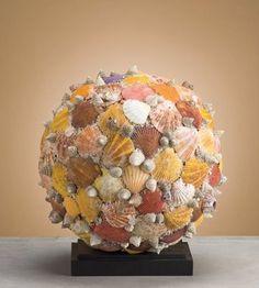 The Designer Insider: Design Inspiration: Seashells!