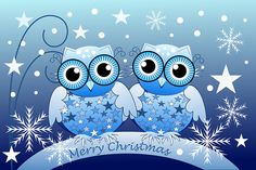 """Cute Blue Owls Merry Christmas text card"" Greeting Cards by walstraasart Merry Christmas Text, Christmas Animals, Happy Owl, Owl Wallpaper, Owl Always Love You, Owl Crafts, Owl Art, Cute Owl, Dot Painting"
