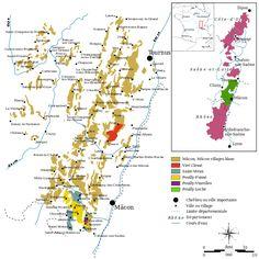 THE MÂCONNAIS: GOOD VALUE WHITE BURGUNDY #wine #wineeducation #france #winetasting #maconnais